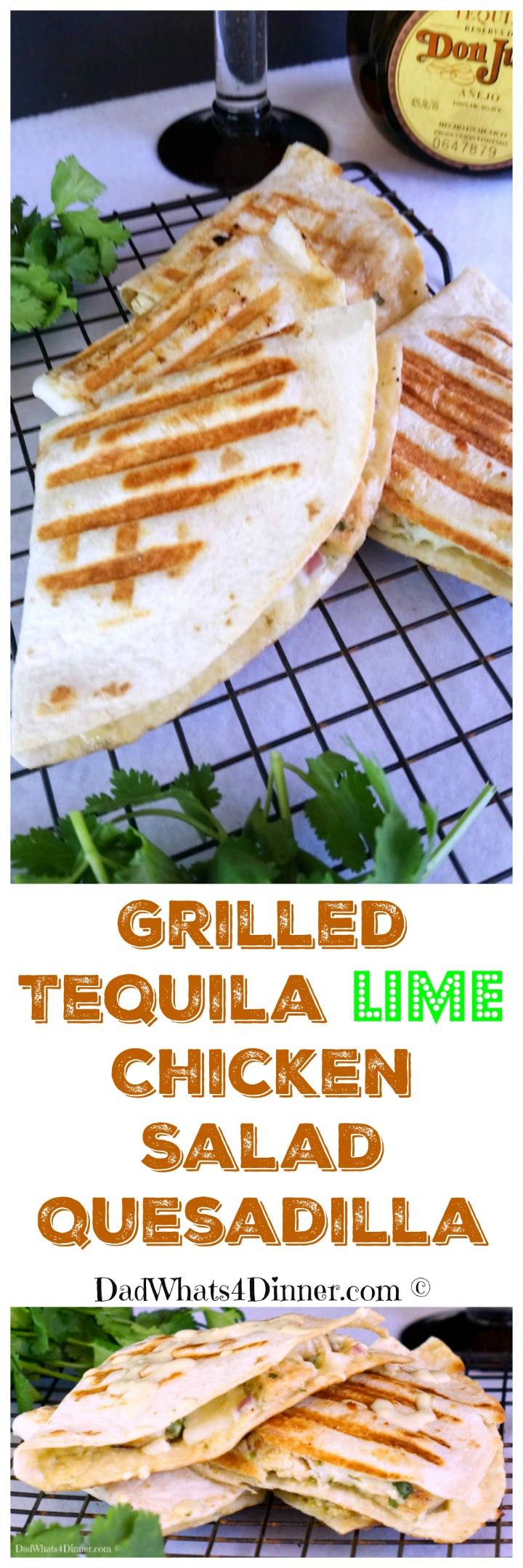 Grilled Tequila Lime Chicken Salad Quesadilla is a fresh south of the border twist on same old chicken salad. Perfect for Cinco de Mayo!